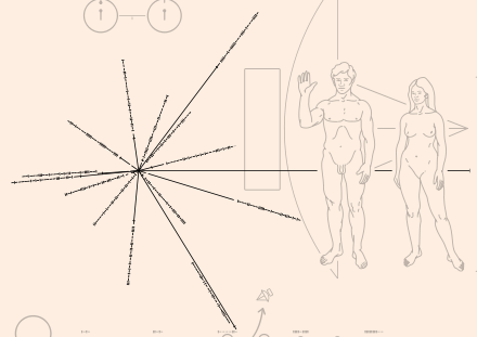 Location of local pulsars