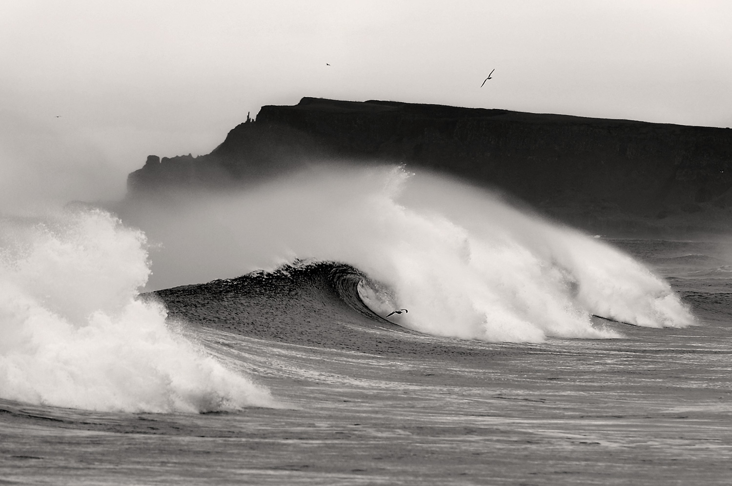 Causeway Surf. Pic by     Andrew Hill