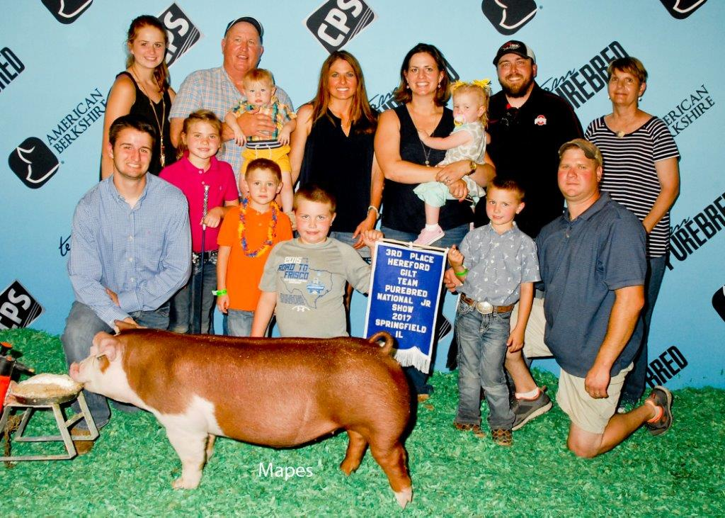 NJS 3rd Overall Hereford Gilt