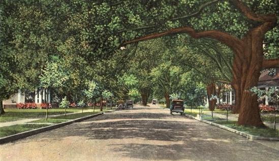 North Monterey Street, c.1920s