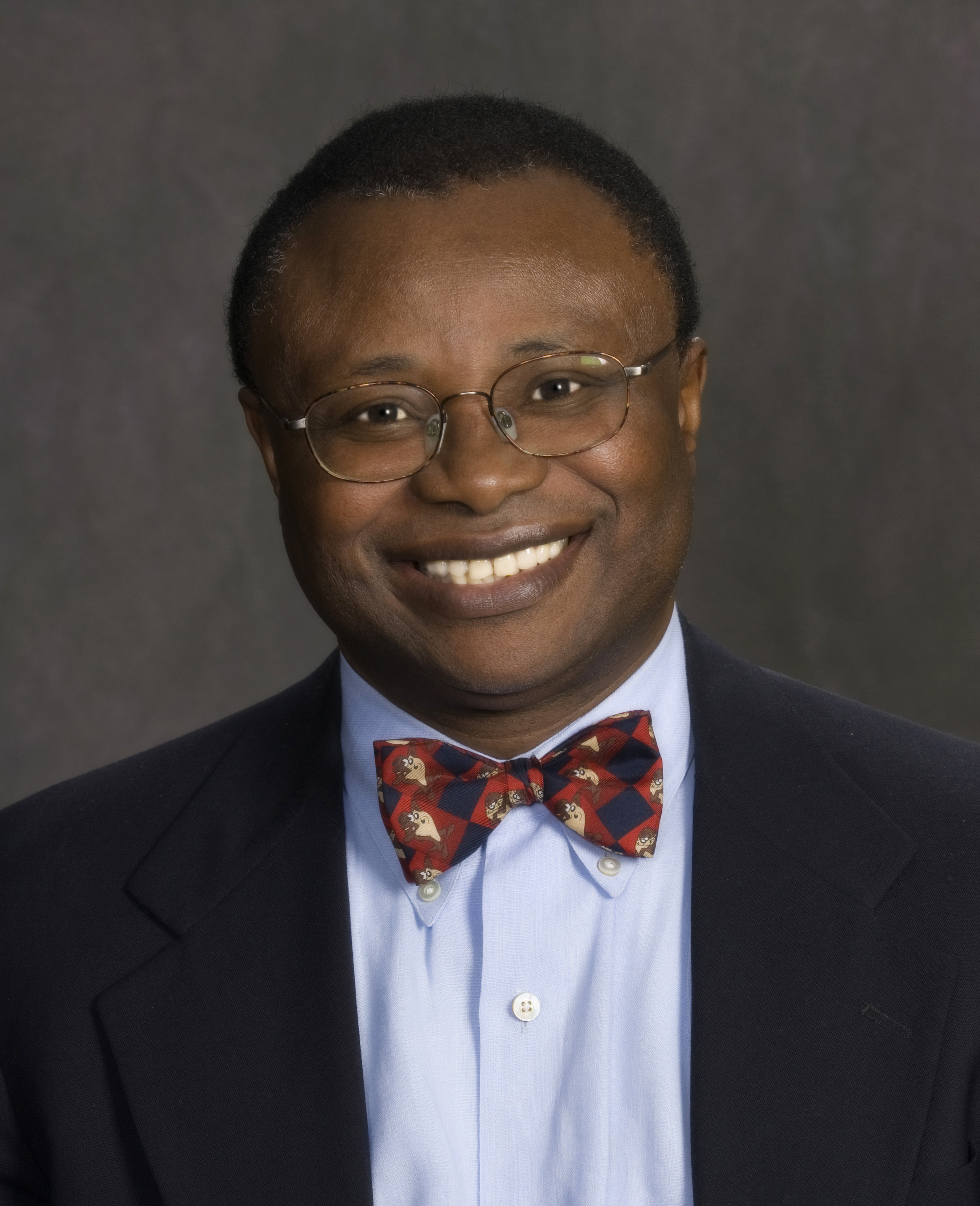 John Nwangwu<br />Vice President
