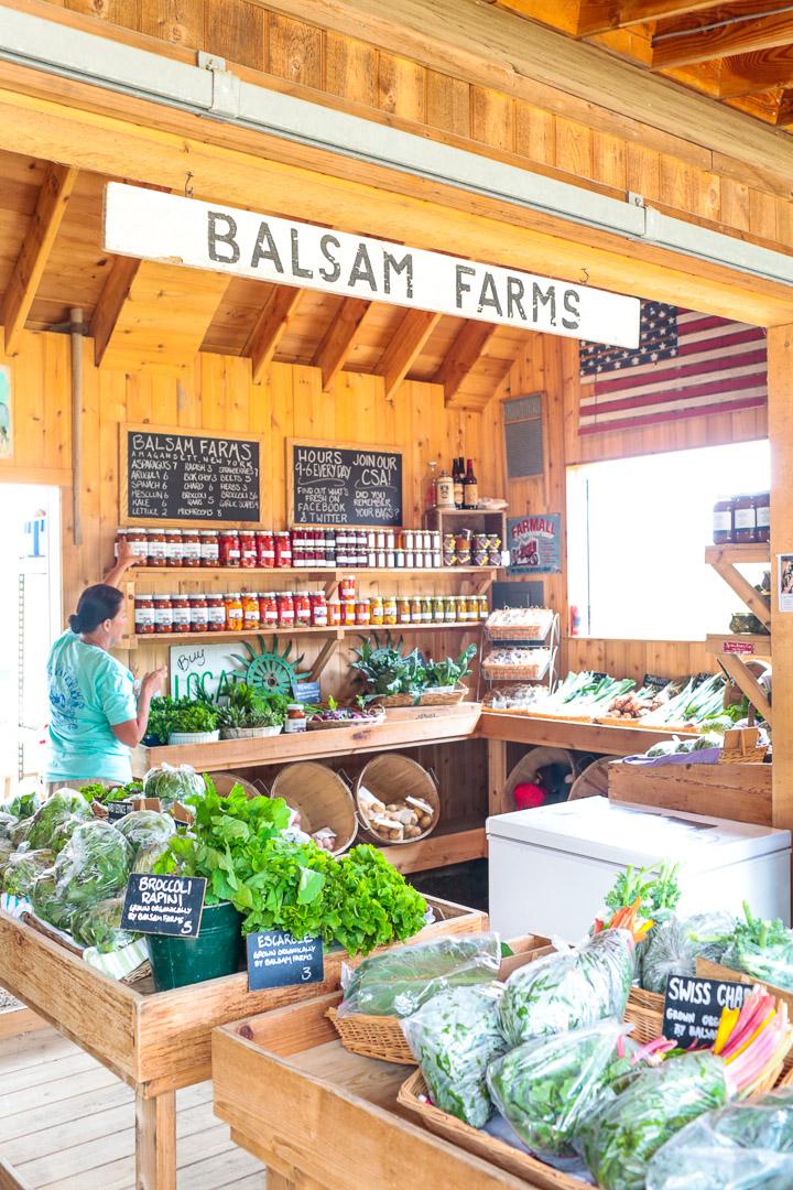 balsalm_farms_amagansett-1153.jpg