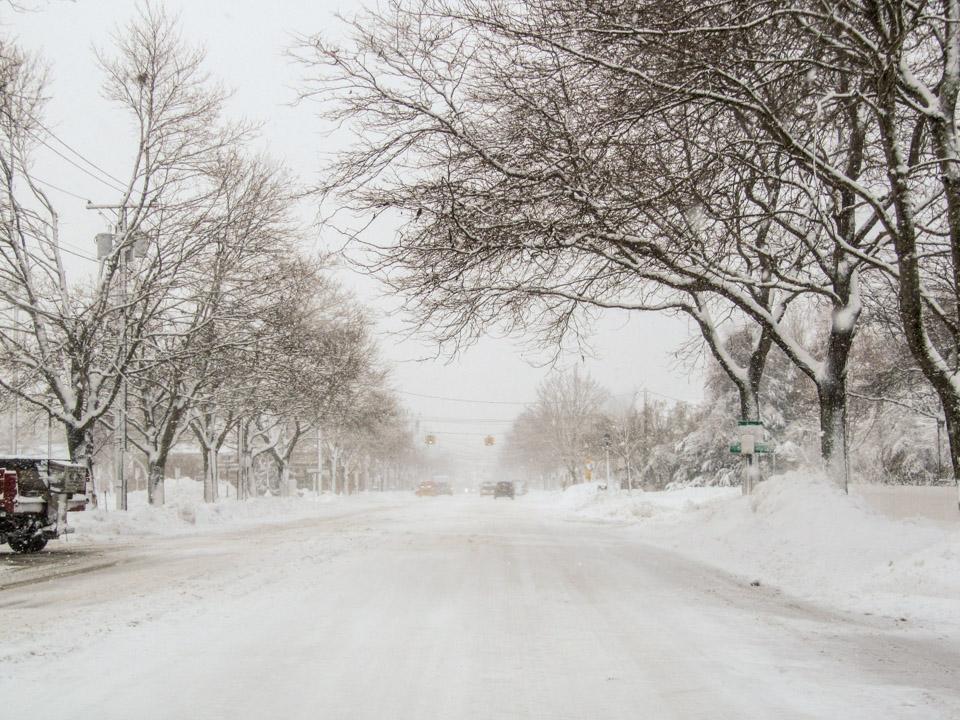 winter2011-0358.jpg