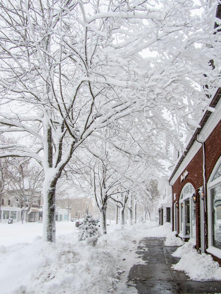 winter2011-0361.jpg