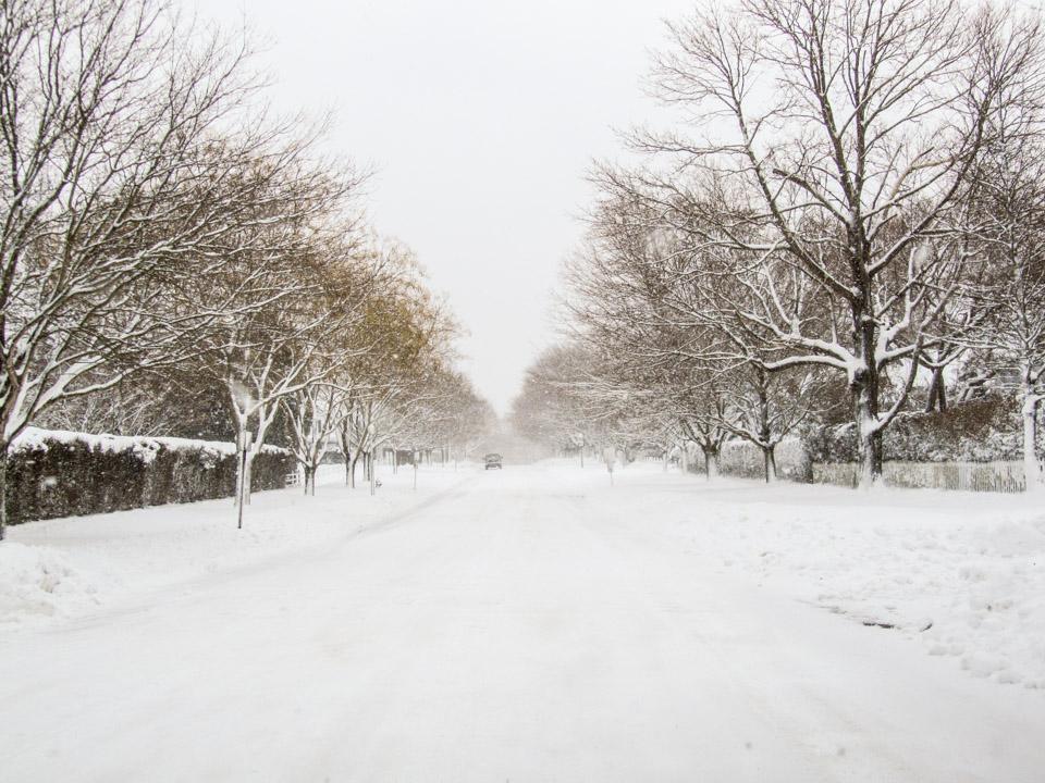 winter2011-0366.jpg