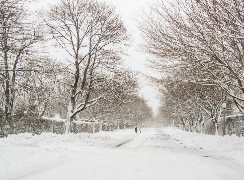 winter2011-0367.jpg