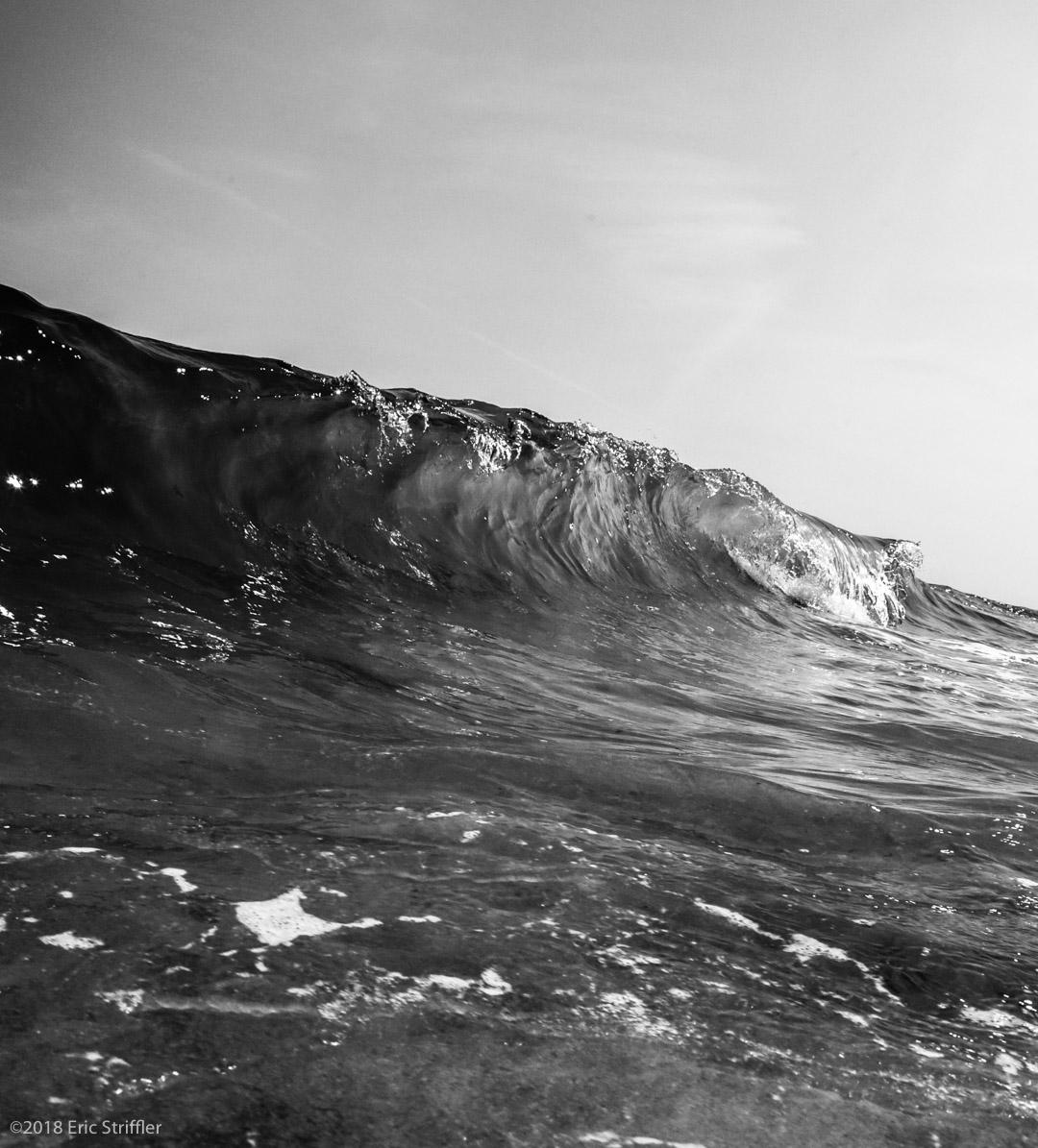 beach_day_aug8-2018-0052.jpg