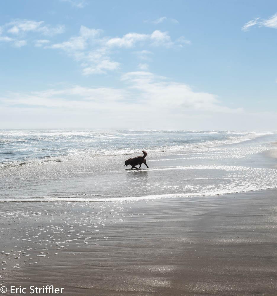 mecox_beach_9-11-18-0020.jpg