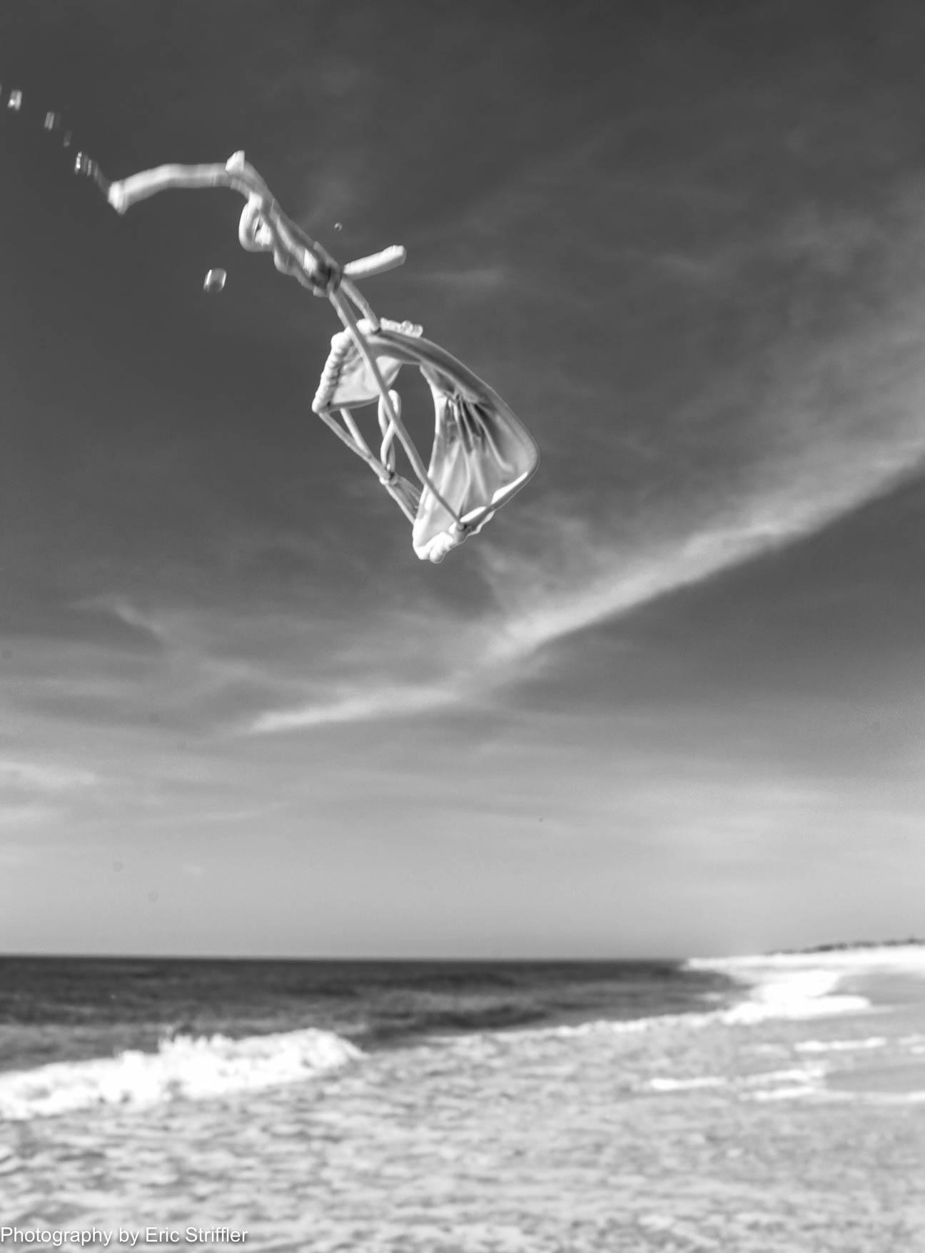 beach-tumbleweed_tue2018-7373.jpg