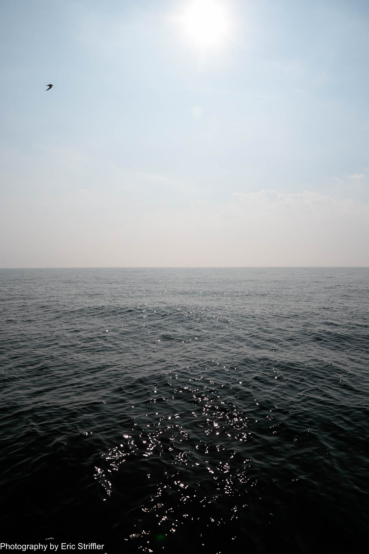 boating2018_robert_godley-9767.jpg