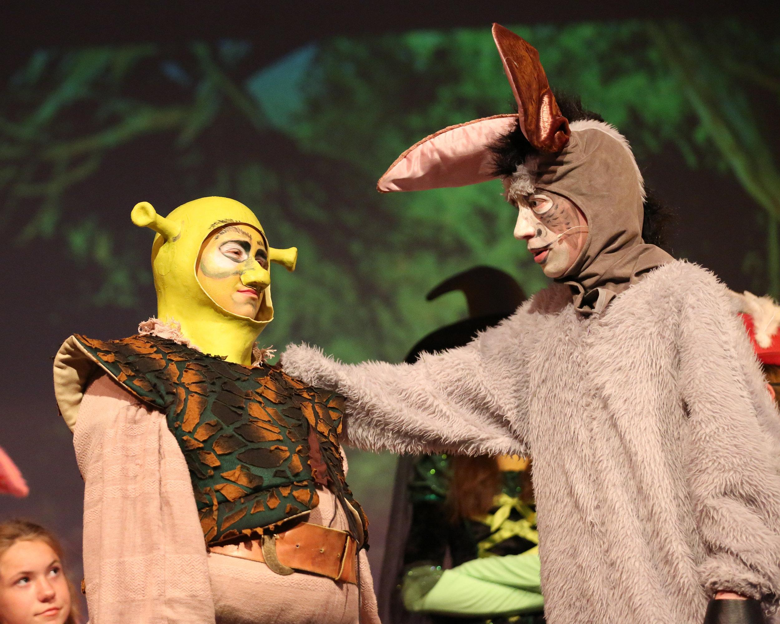 Shrek-248.jpg