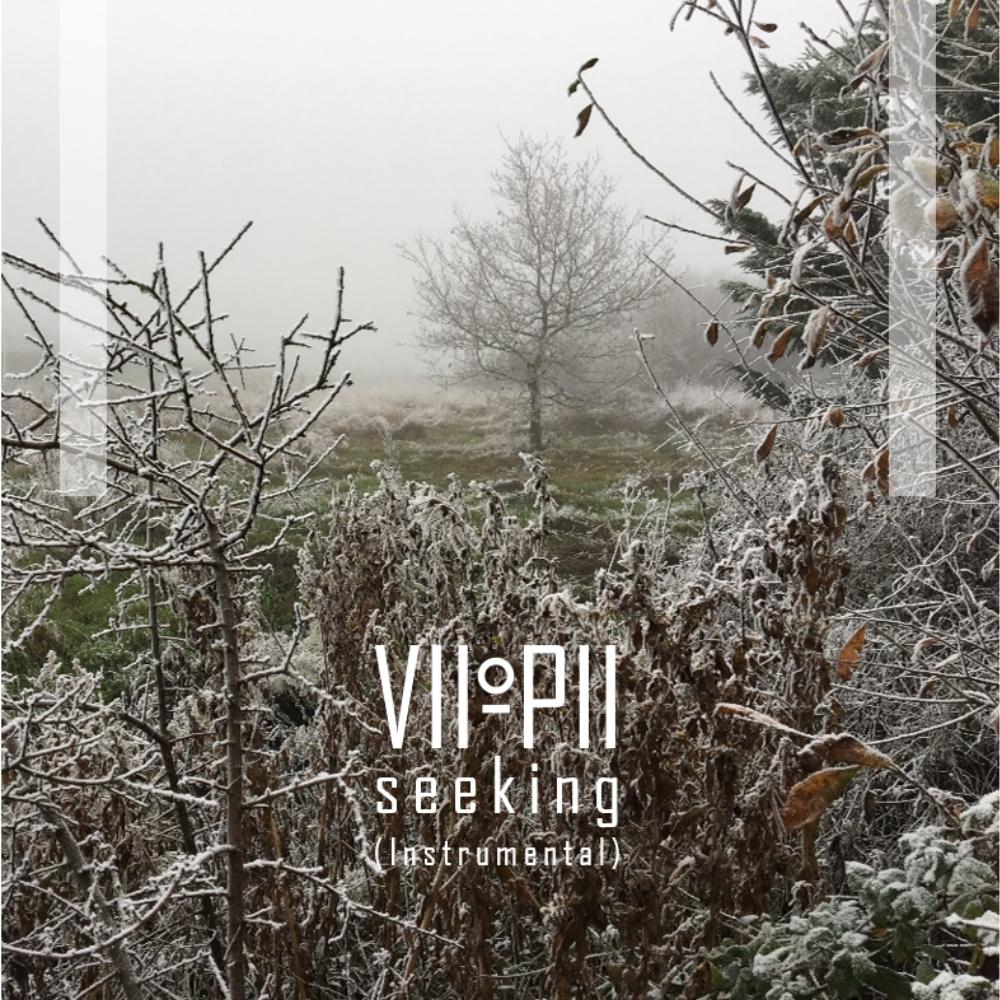 Seeking (Instrumental) L.jpg