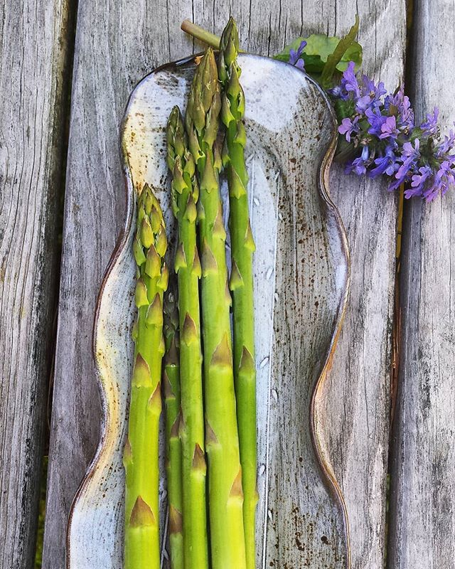 Tiny trees for dinner... . . . Asparagus trays in the shop . . . #springvibes #frommygarden #eatyourgreens