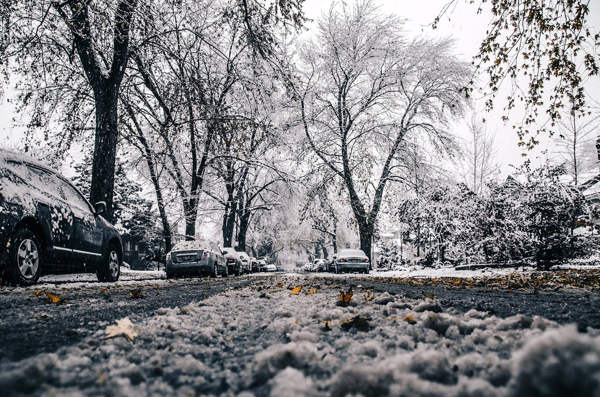 First snowfall of the 2017-2017 winter..