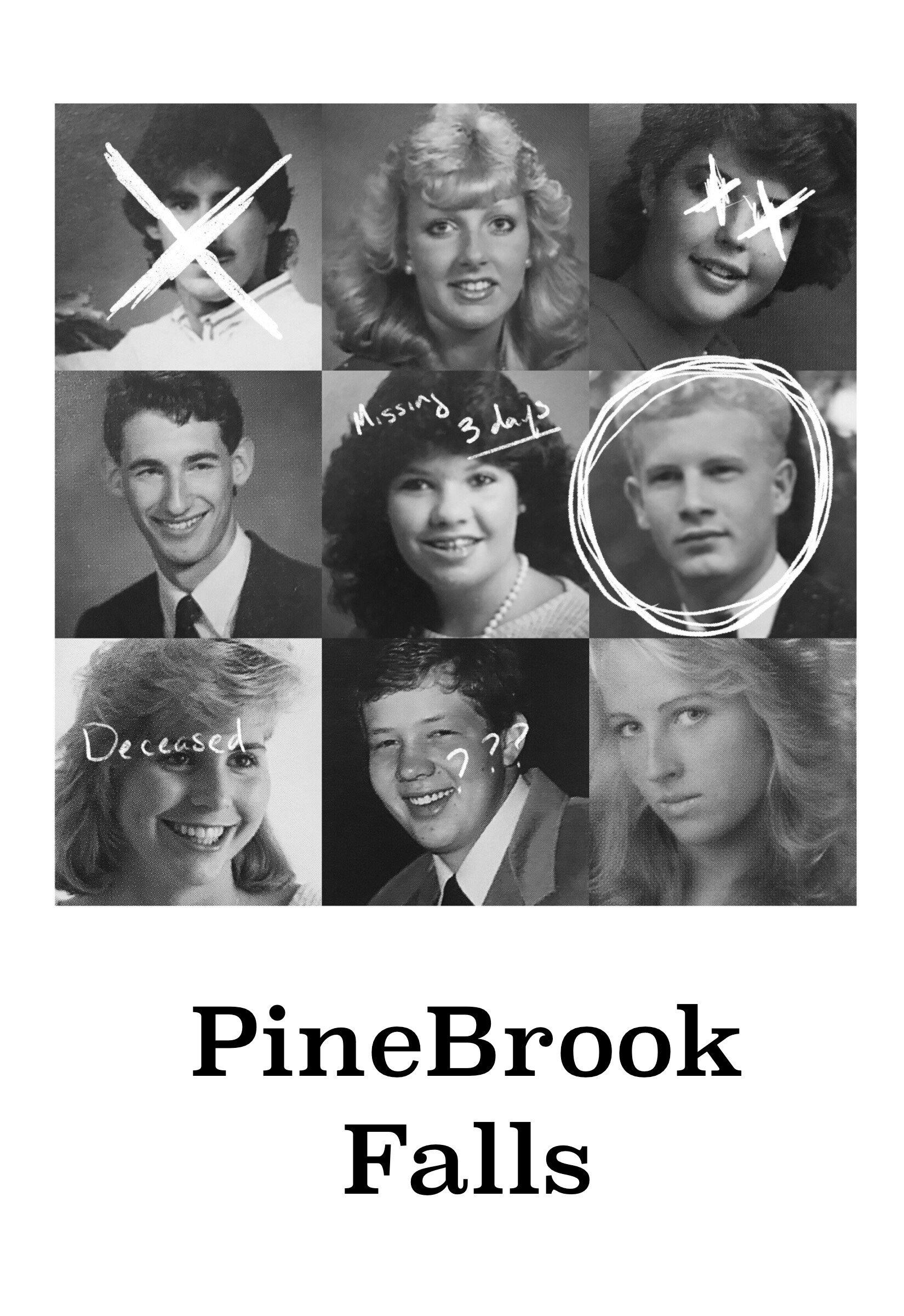 Pine Brook Falls Zine Issue #1