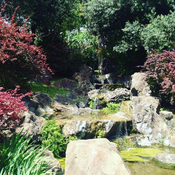 The Japanese Garden.jpg