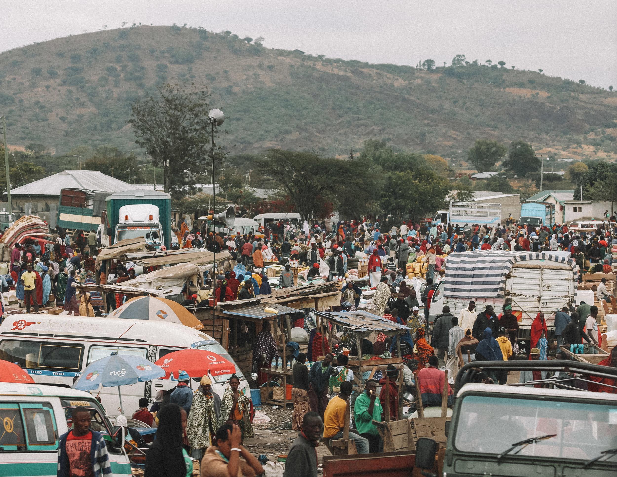 Christine Wheeler - Ngorongoro Safari-2.jpg