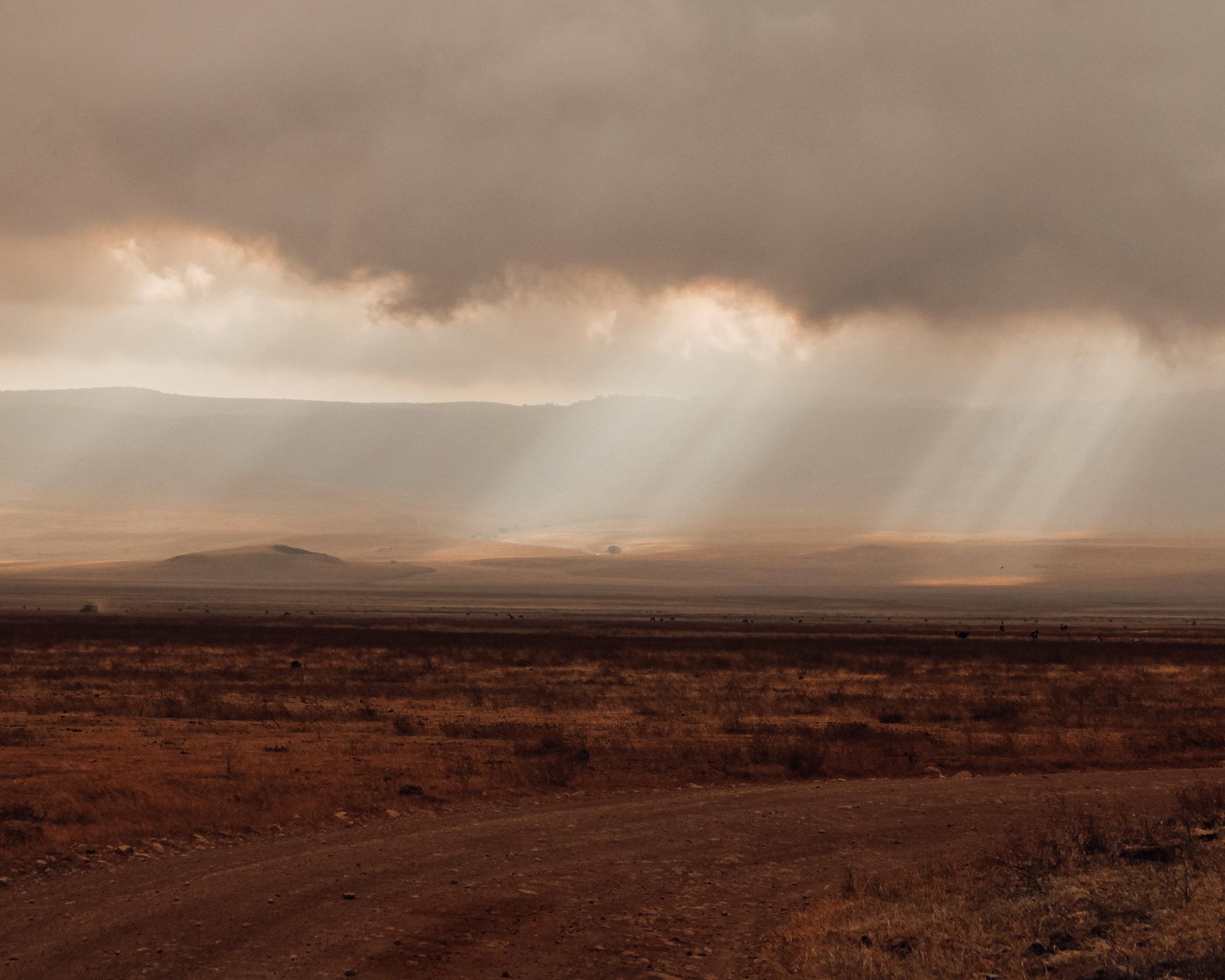 Christine Wheeler - Ngorongoro Safari-29.jpg