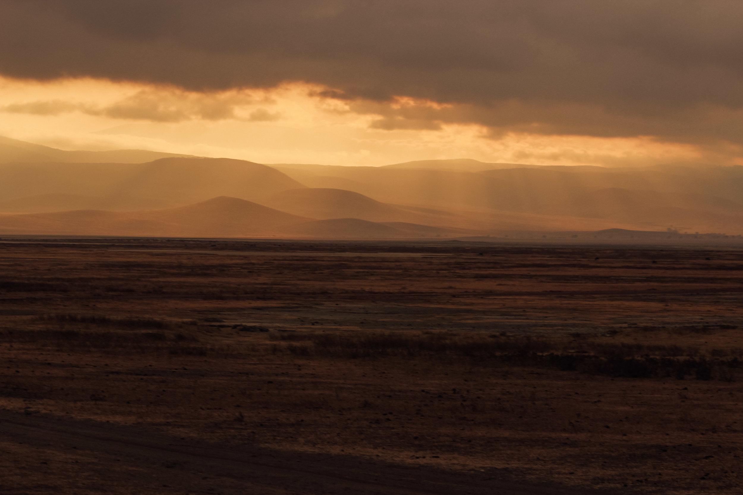 Christine Wheeler - Ngorongoro Safari-30.jpg