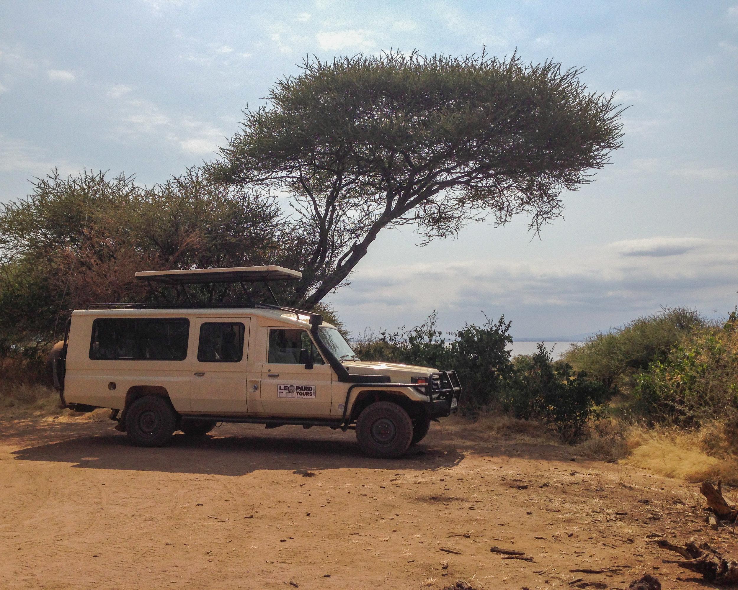 Christine Wheeler - Ngorongoro Safari-33.jpg