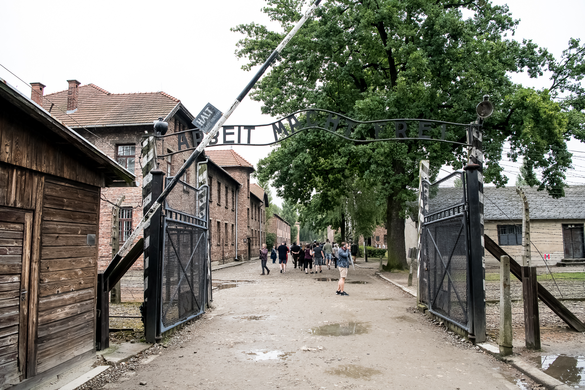 The Travel Hub Auschwitz-1.jpg