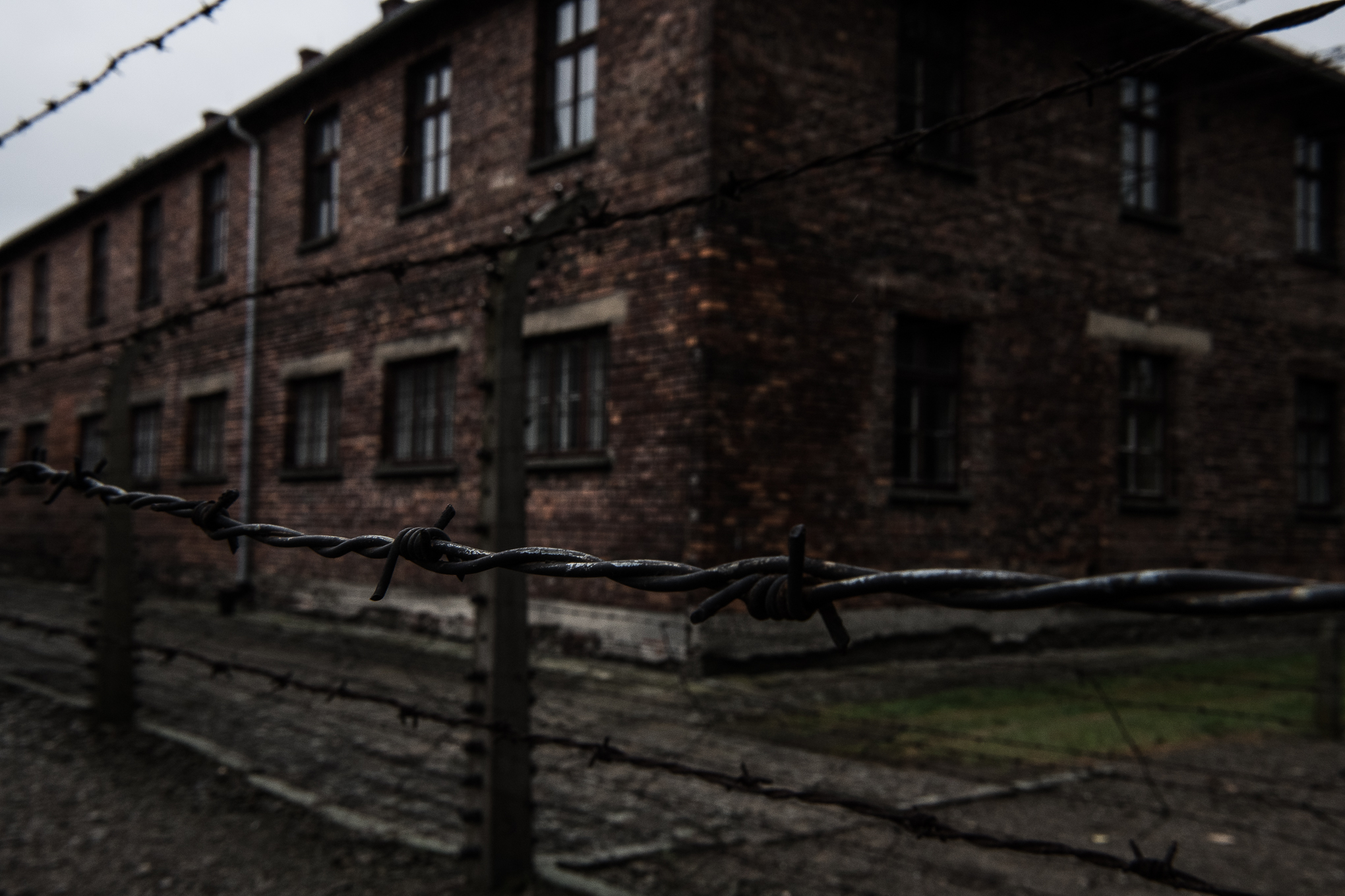 The Travel Hub Auschwitz-16.jpg