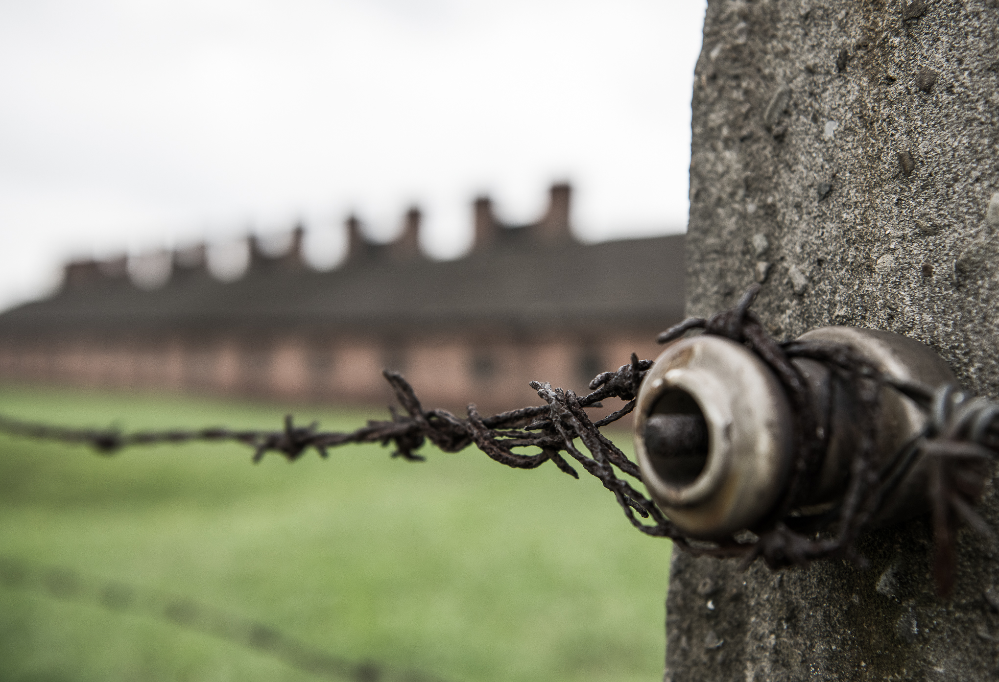 The Travel Hub Auschwitz-24.jpg