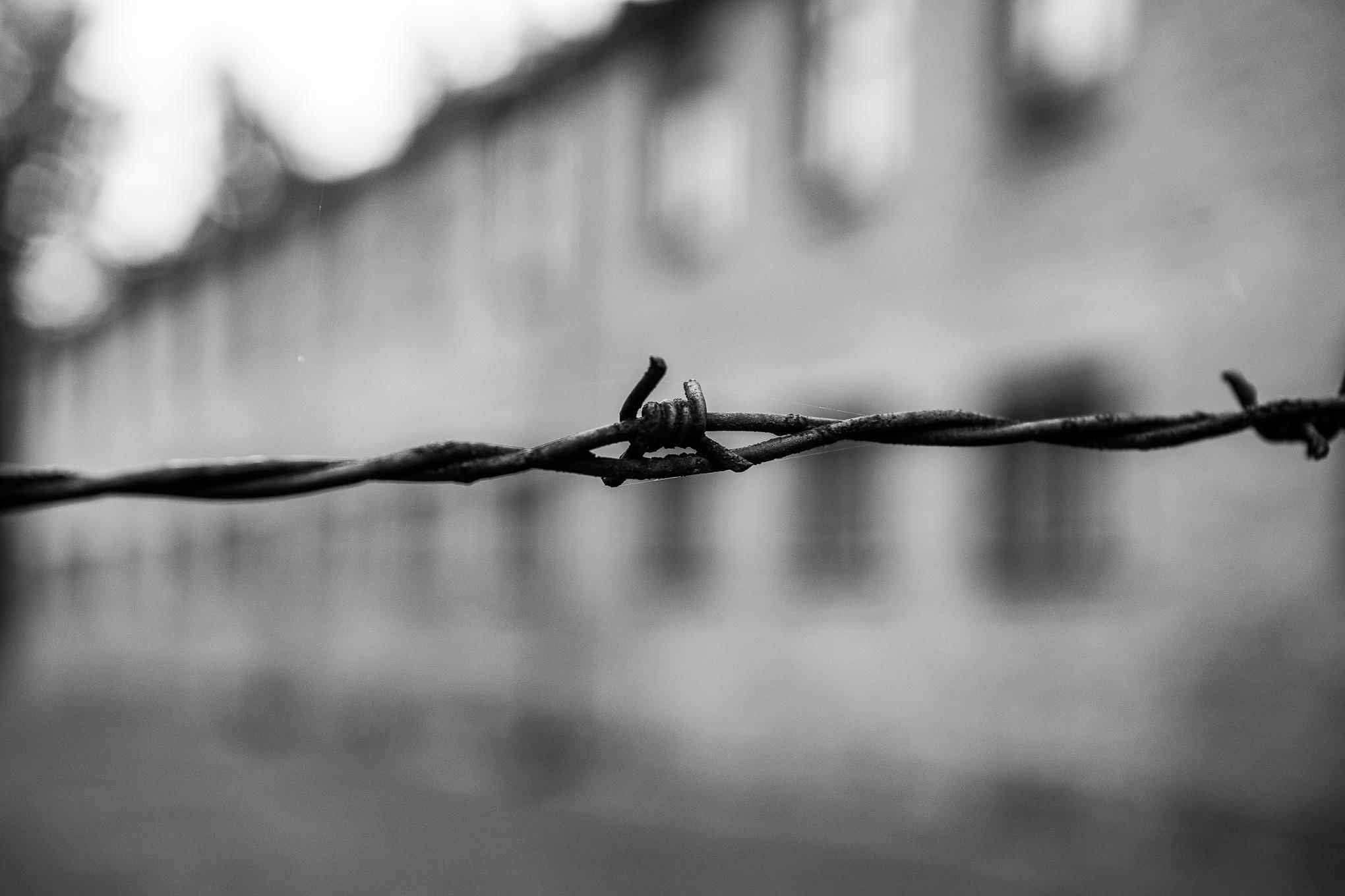 The Travel Hub Auschwitz-11.jpg