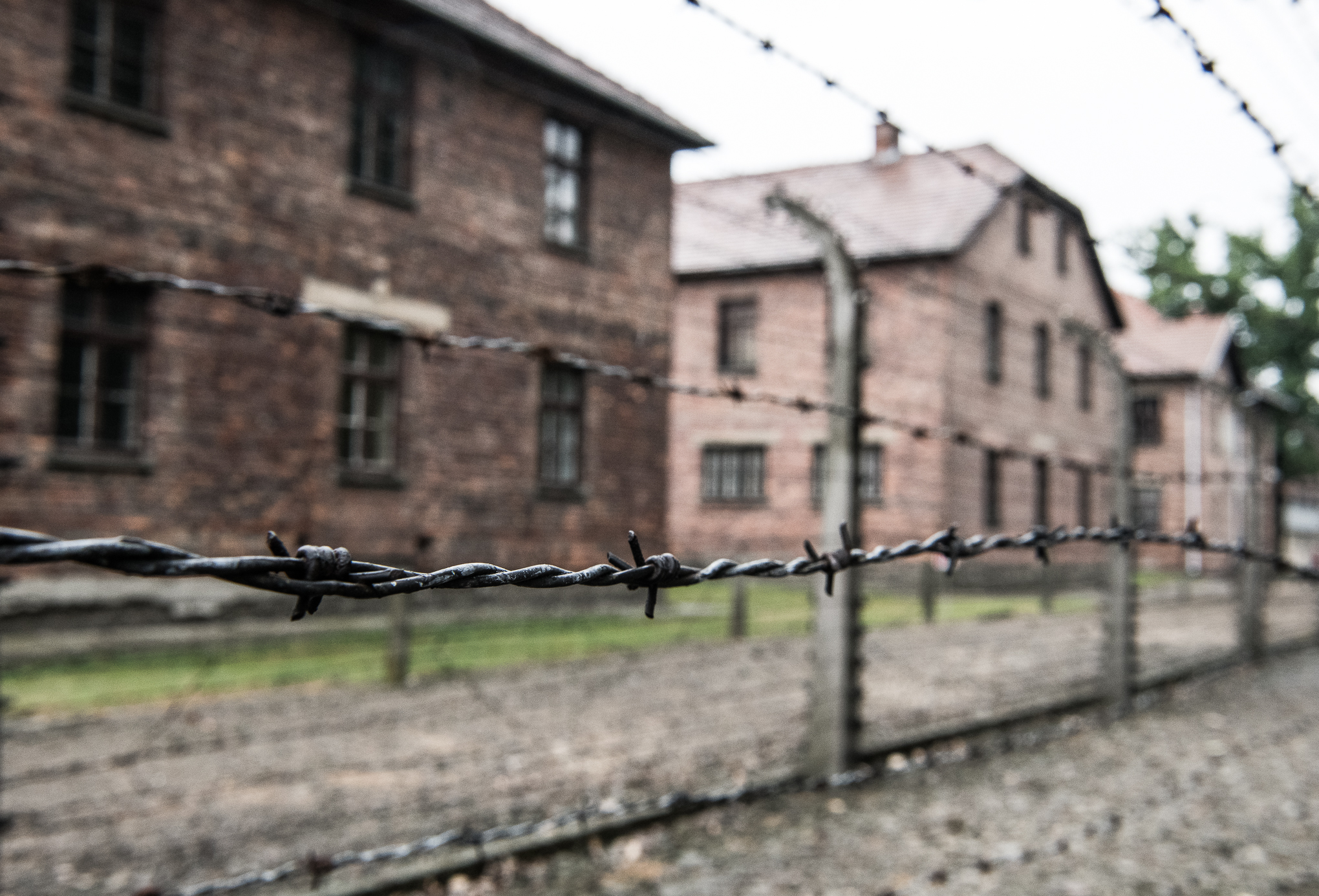 The Travel Hub Auschwitz-18.jpg