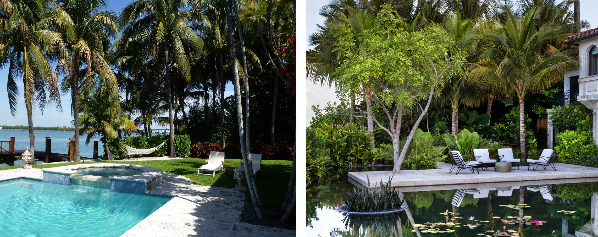 MIAMI BEFORE / AFTER