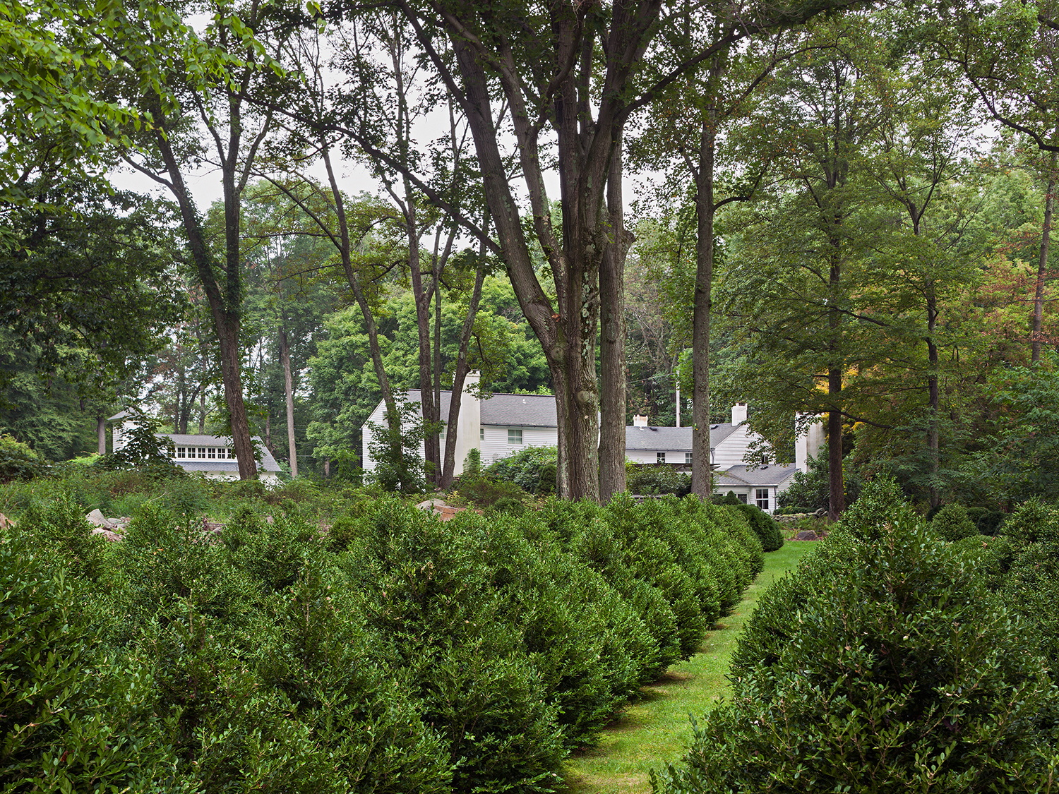 AT THE BOXWOOD FARM, THE GARDENS REFER TO THE AREA'S AGRICULTURAL PAST