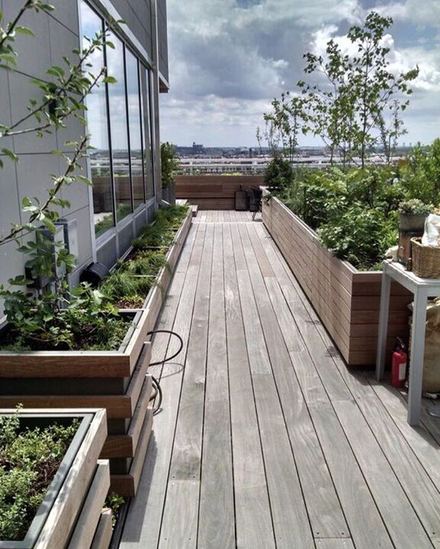 A work in progress: a terrace garden for a chef and a dancer, full of edible plants and spaces worthy of a leap. #landscapearchitecture #wildbydesign #greenroof #ediblegarden #rooftopagriculture #rooftopfarm
