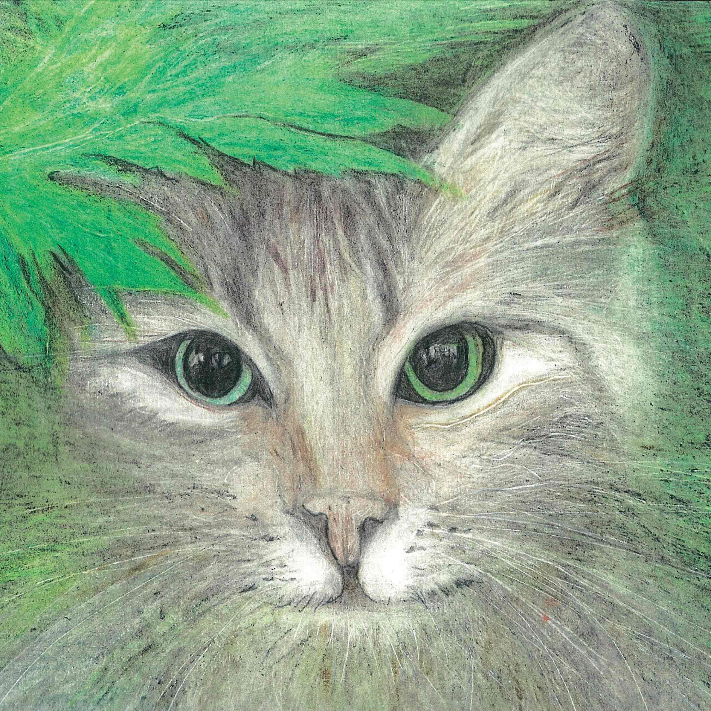 ASB-05-Starey-Cat-by-Dianne-Stephens-CMYK.jpg