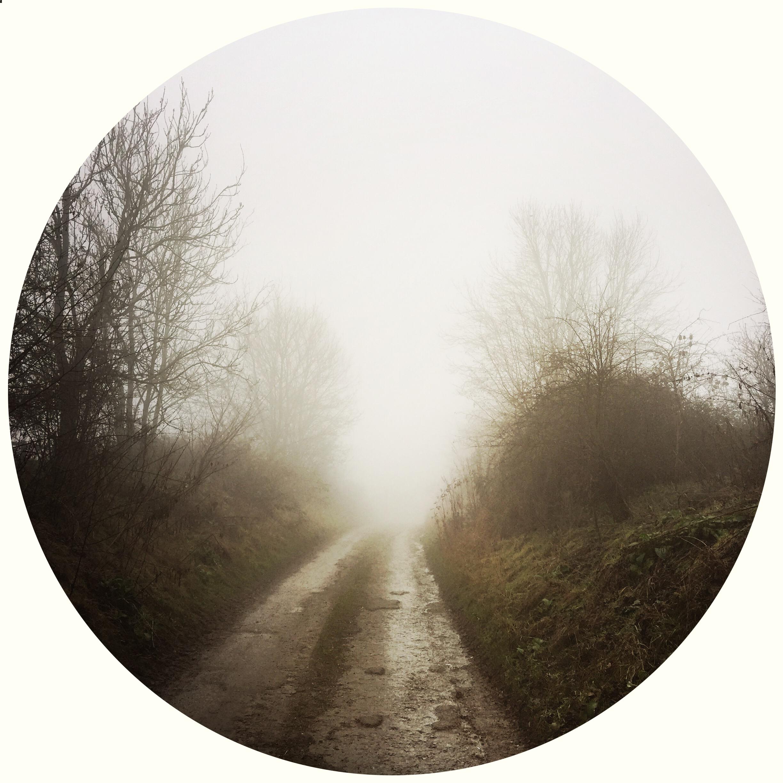 Gloomy Surrey Polina Zaitseva © 2015