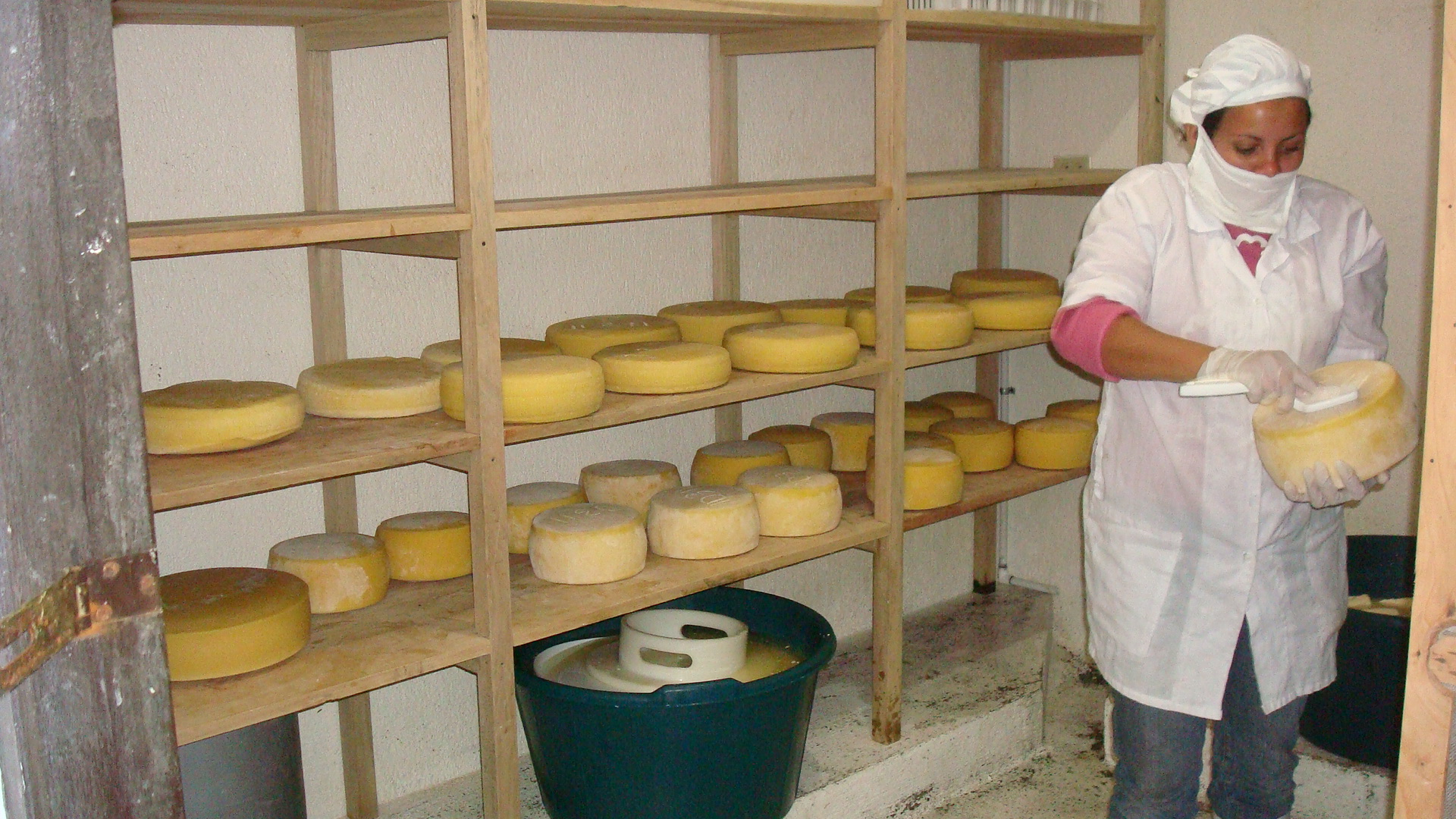 cheese-production.JPG