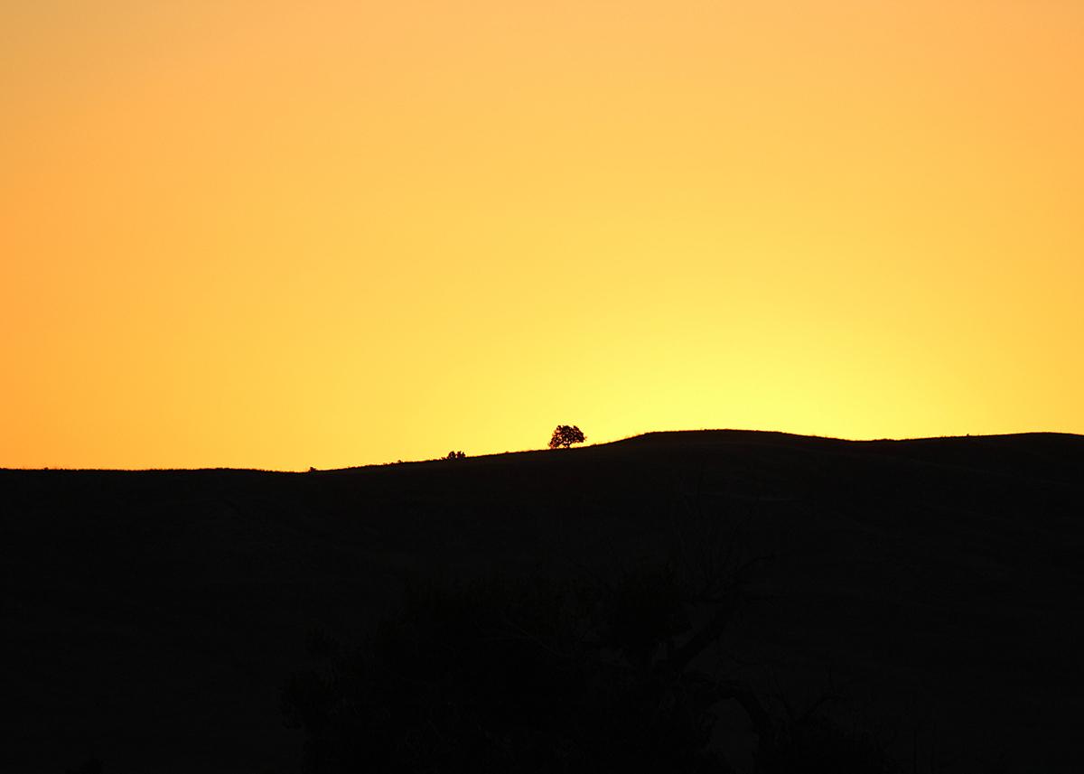 OITP Badlands Sage Creek Morning web.jpg