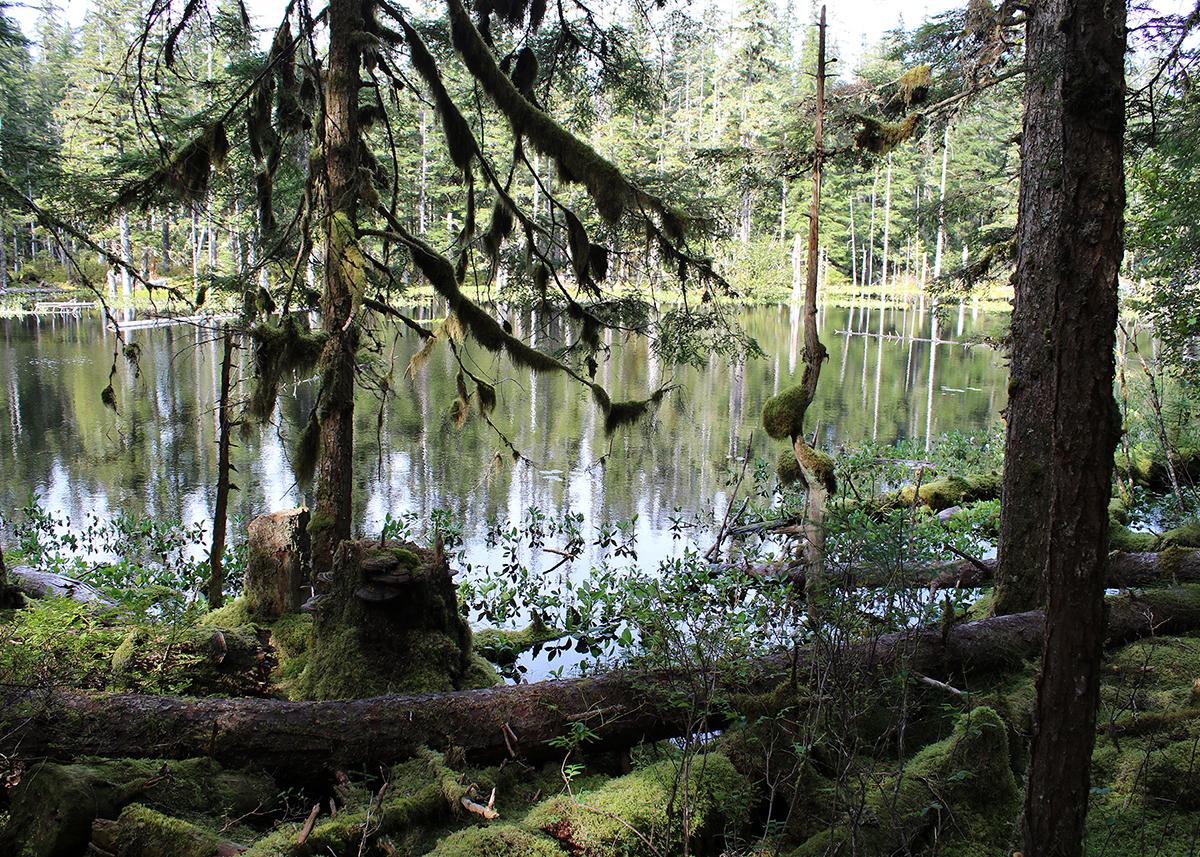 OITP Glacier Bay Pond web.jpg