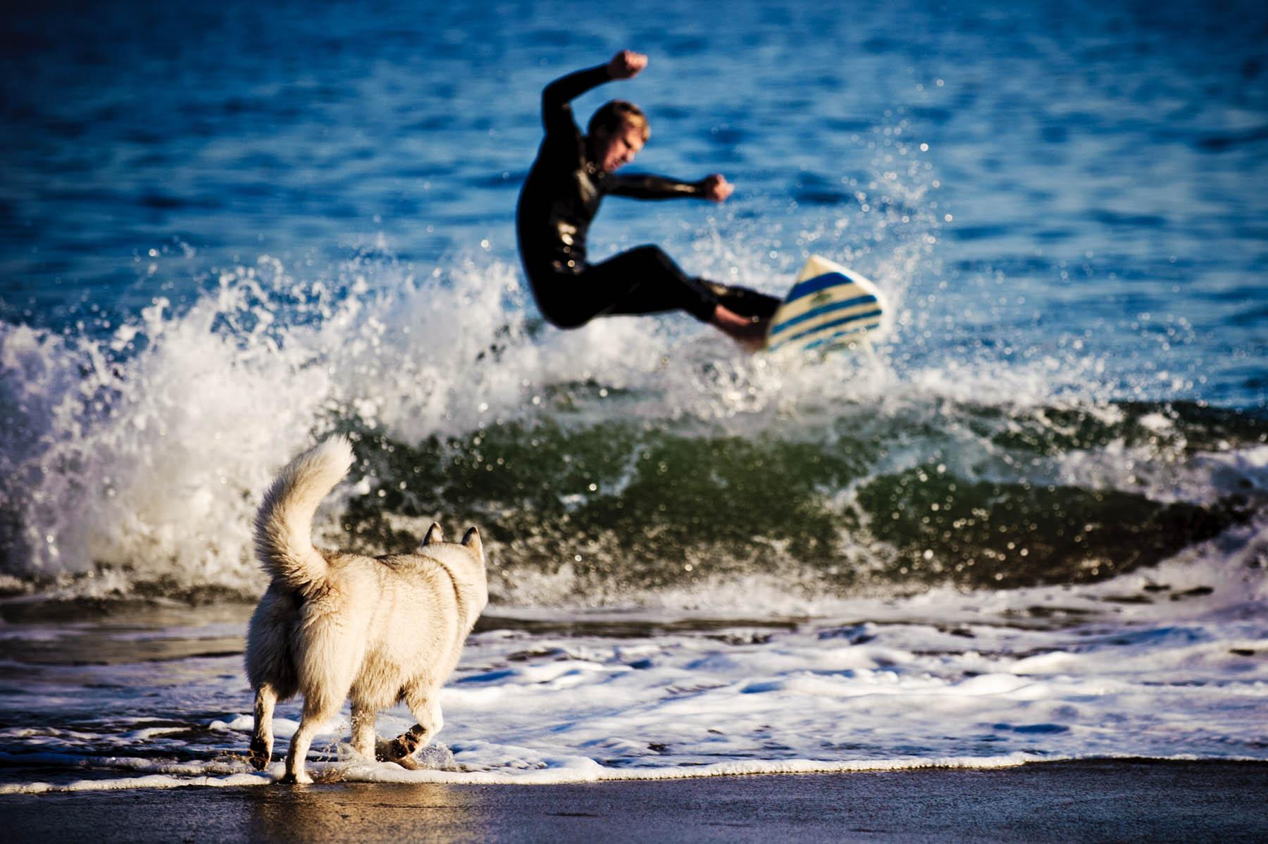 9696-d3_Alexandra_Santa_Cruz_Pet_Dogs_Photography_Lighthouse_Field_Dog_Beach.jpg