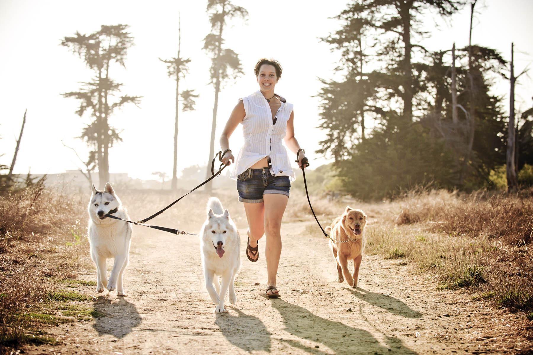 9535-d3_Alexandra_Santa_Cruz_Pet_Dogs_Photography_Lighthouse_Field_Dog_Beach.jpg