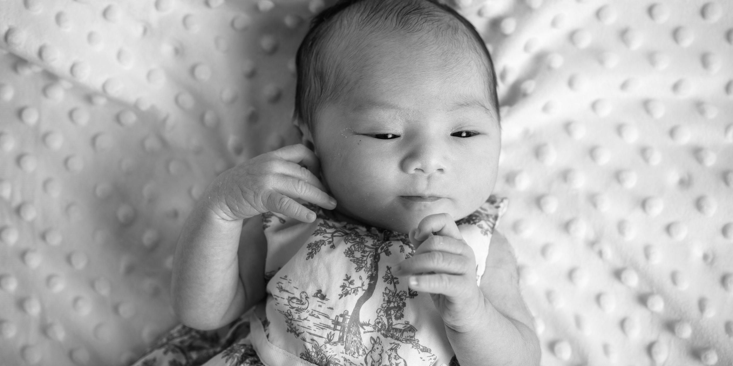 Capitola Newborn Family Photography - photos by Bay Area portrai