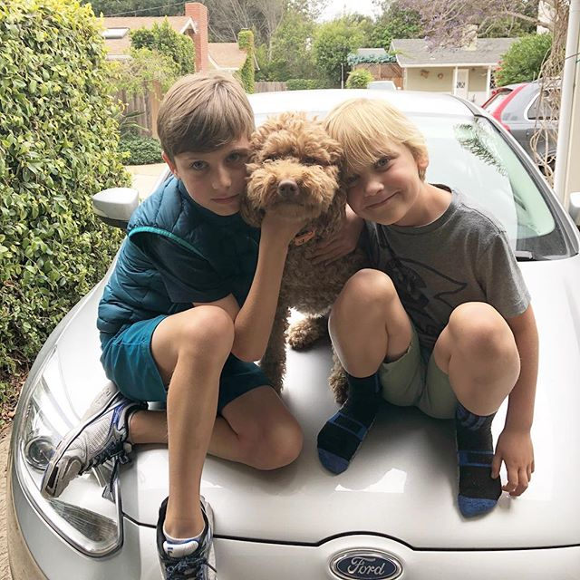 This afternoon was sibling fighting and gnashing of teeth but then cuteness like this happens. My afternoon in emojis 😡😬🤨😍😂. . . . #brothers #siblinglove #frienemies #doodledog #cuteness #parenting #boymom #momofboys