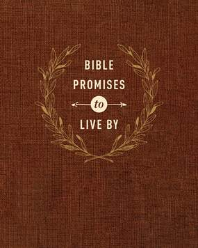 Bible Promises to Live By.jpg