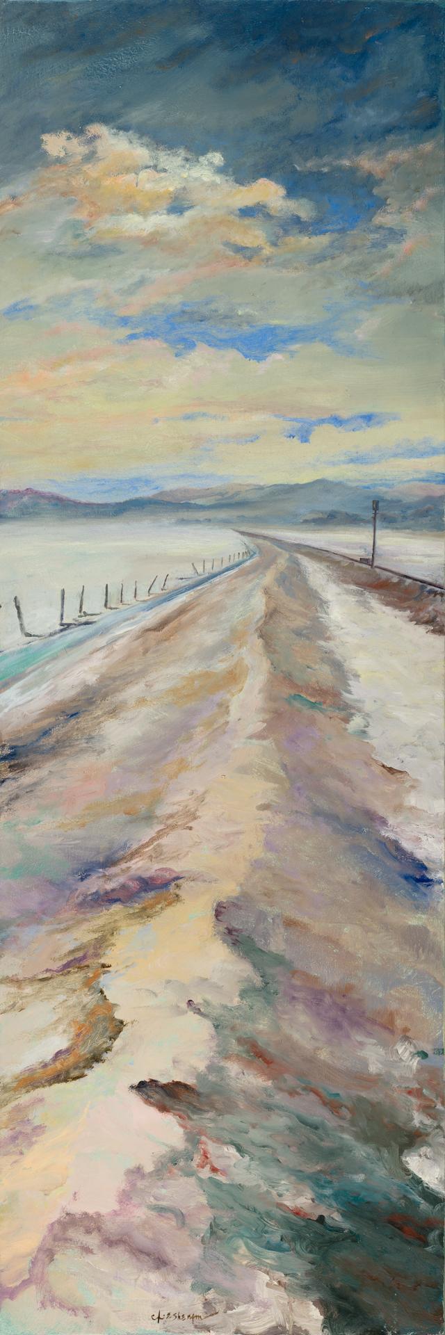 Bonneville Salt Flats Triptych (3 of 3)_zap.jpg
