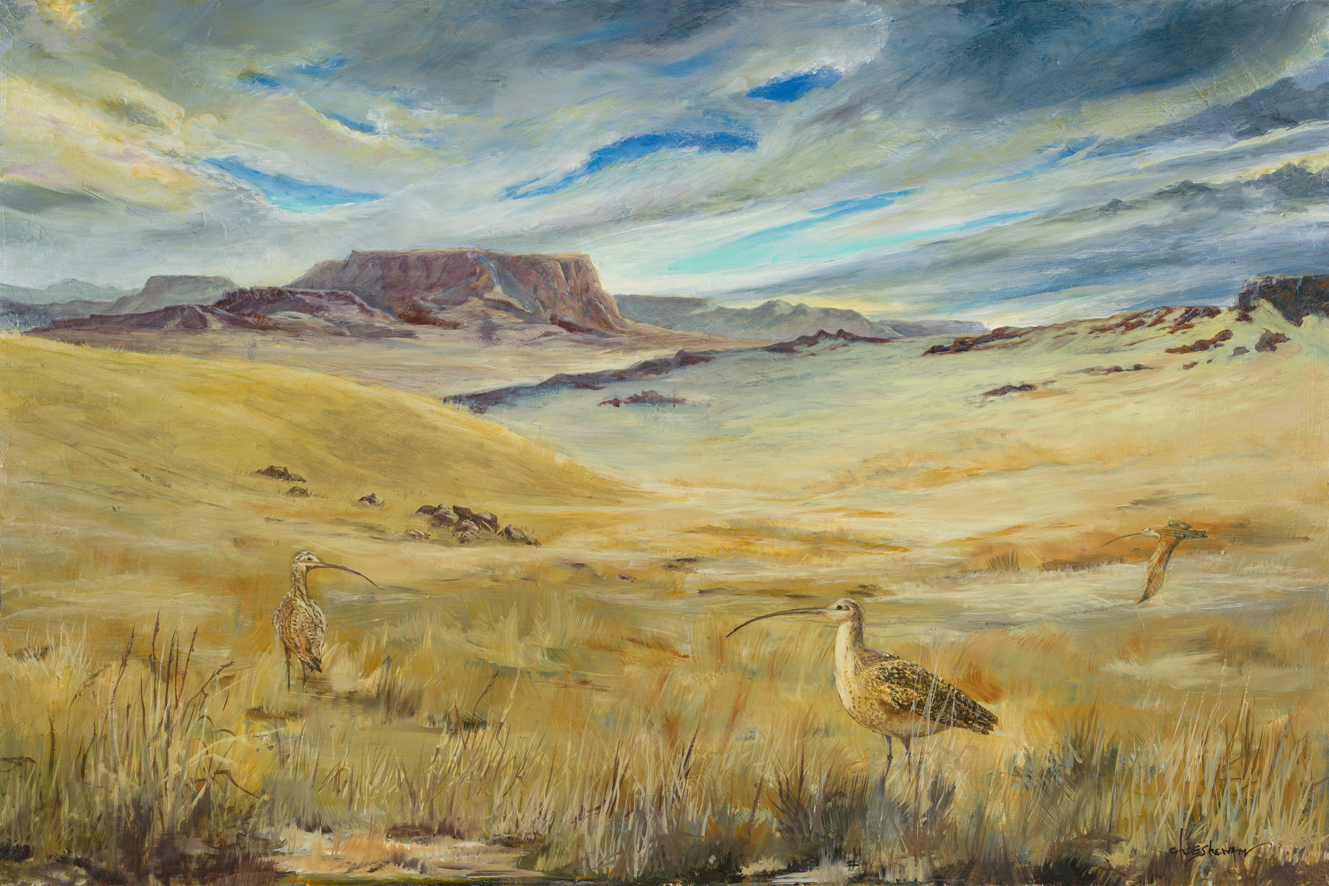 Long billed Curlews 24x36 oil on canvas $2300.00