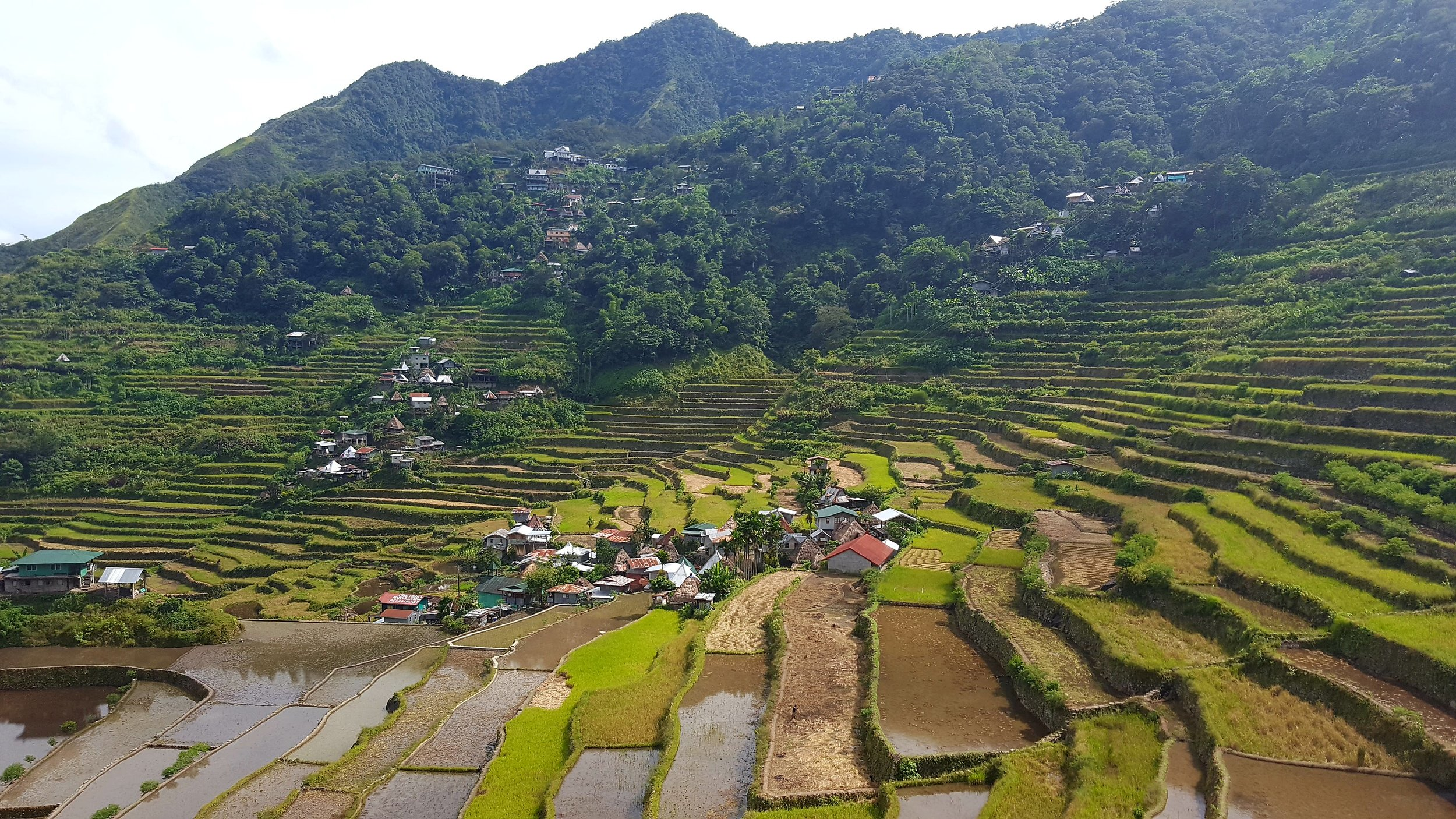 Banaue and Batad were my first stops when I backpacked the Philippines