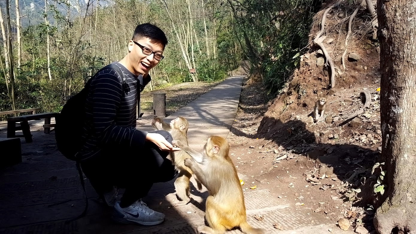 These adorable little monkeys were the best surprise of our time in Zhangjiajie