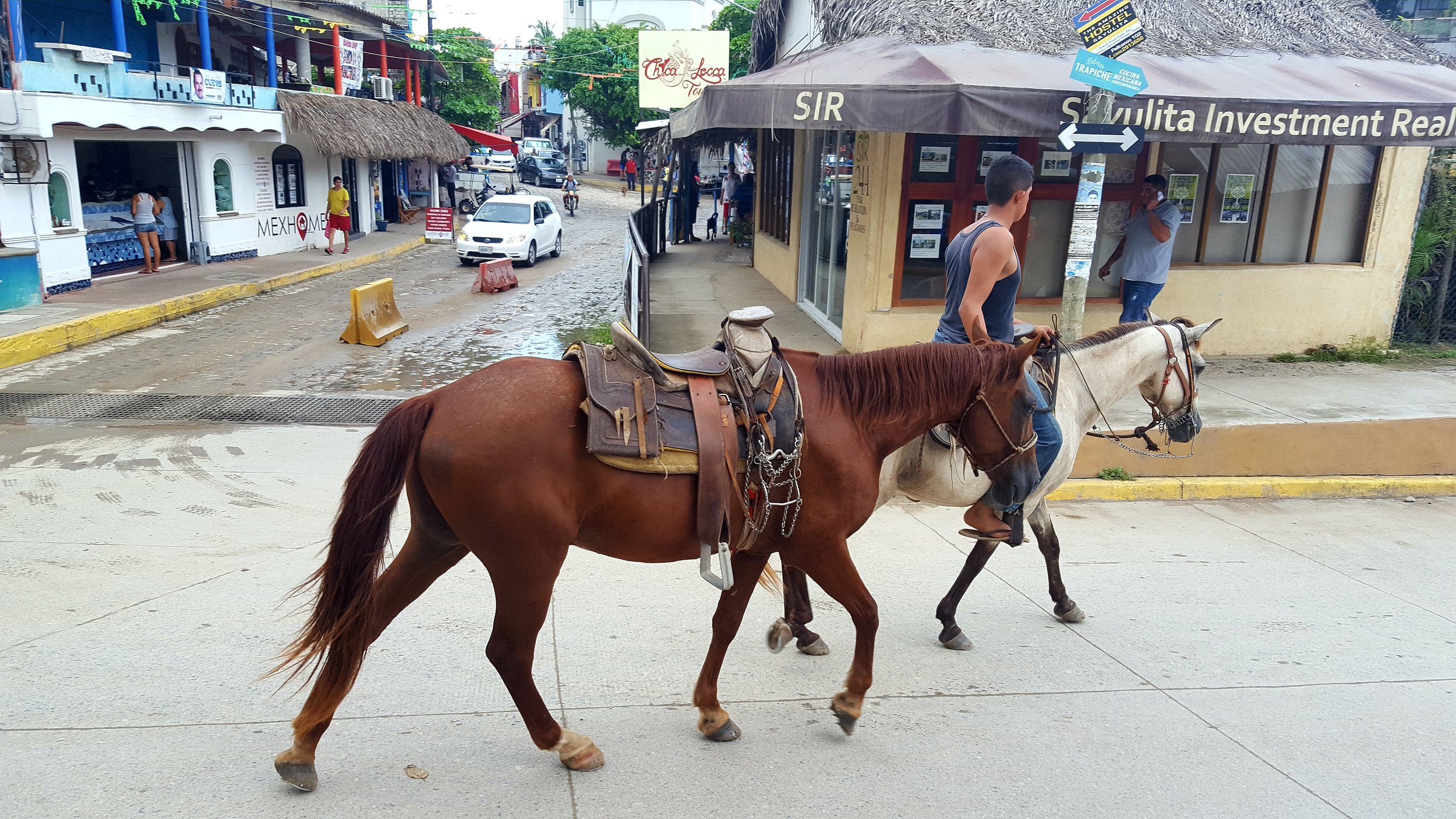 Waiting for horses to cross the road in the slower-paced town of Sayulita
