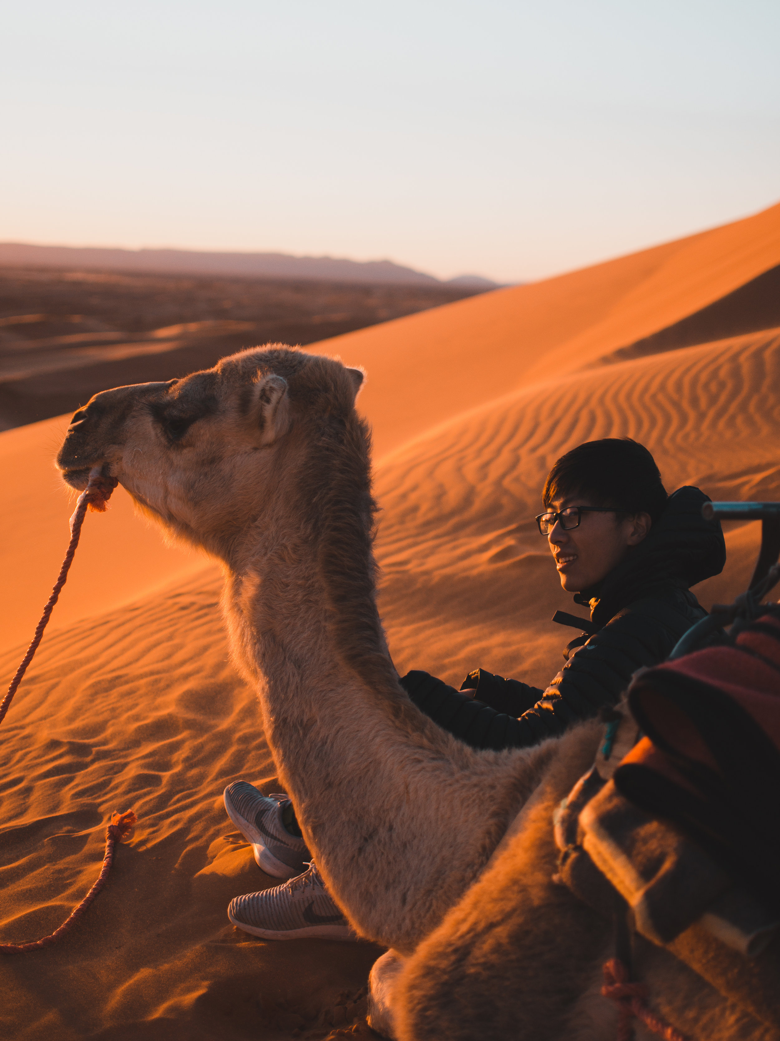 Sunset camel tour in Morocco