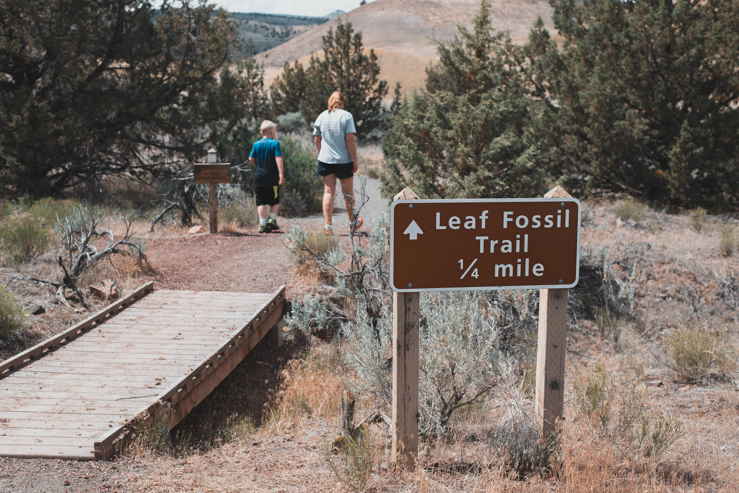 The beginning of the Leaf Fossil Trail at the Painted Hills in Oregon