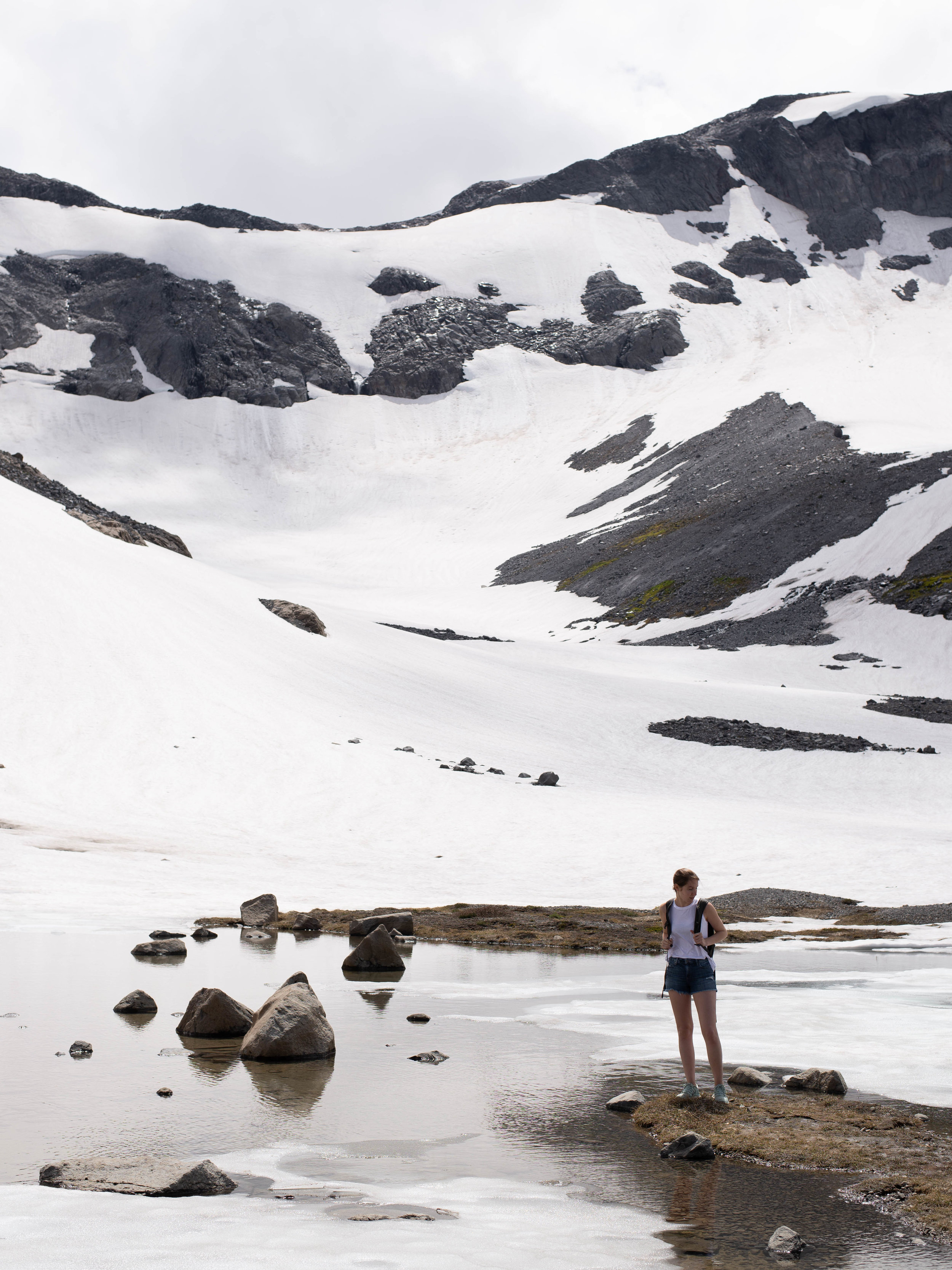 Rocks and snowy slopes on Mt. Rainier's Panhandle Gap trail